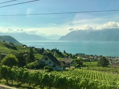 train ride to the Alps